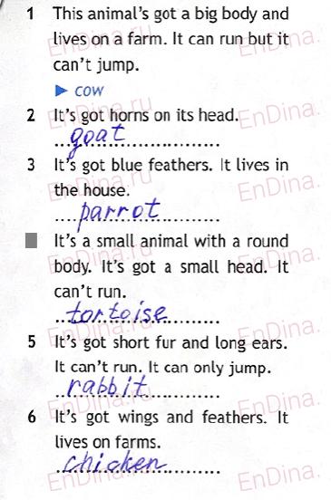 Spotlight 5. Workbook - Module 5. 5c My pet, ответ 2