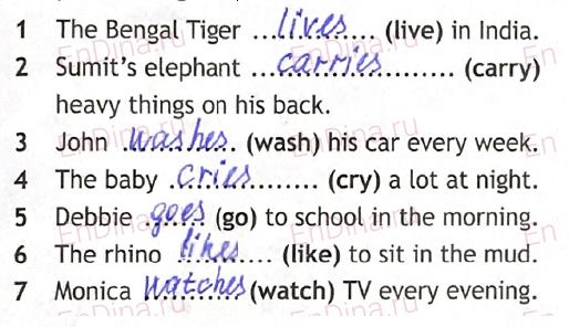 Spotlight 5. Workbook - Module 5. 5 Grammar Practice, ответ 2