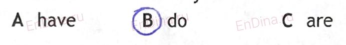 Spotlight 5. Workbook - Revision Section. Modules 7&8, ответ 13