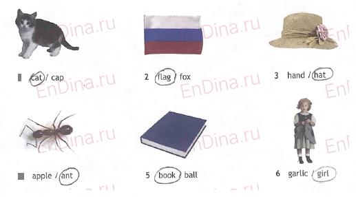 Spotlight 5. Workbook - Starter. The English alphabet (IV), ответ 2