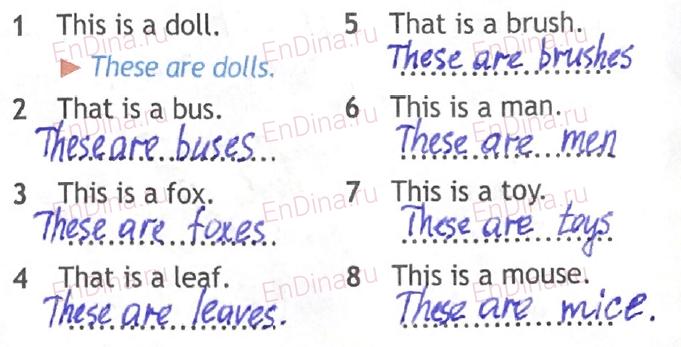 Spotlight 5. Workbook - Module 2. 2b My things, ответ 4