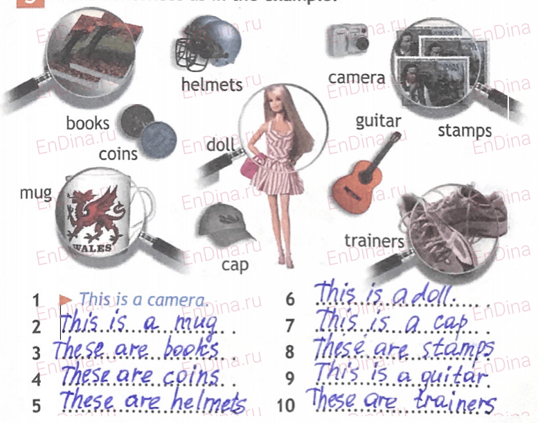 Spotlight 5. Workbook - Module 2. 2 Grammar Practice, ответ 6