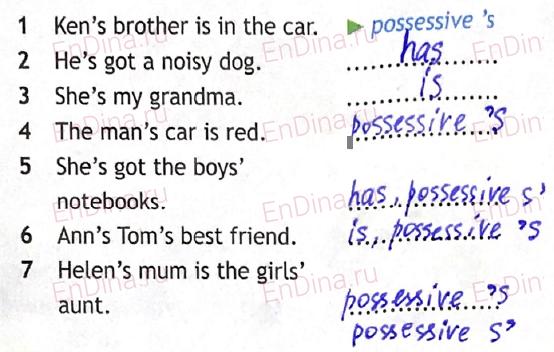 Spotlight 5. Workbook - Module 4. 4 Grammar Practice, ответ 8