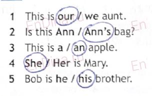 Spotlight 6. Workbook - Module 1. 1 Grammar Practice, ответ 7