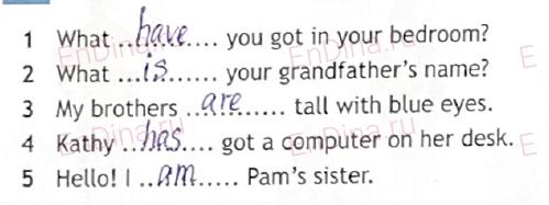 Spotlight 6. Workbook - Module 1. 1 Grammar Practice, ответ 14